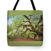 Ancient Angel Oak Tree  Tote Bag