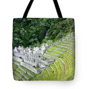Ancient Architecture Tote Bag