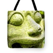 Ancient Artifacts 2 Tote Bag