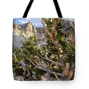 Ancient Bristlecone Pine Great Basin Tote Bag by Kyle Hanson
