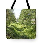 Ancient Ditch Tote Bag