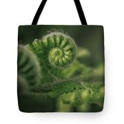 Ancient Forest Tote Bag