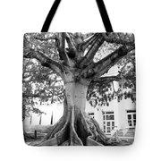 Ancient Kapok Key West Tote Bag