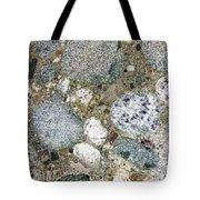 Ancient Lake Bed Tote Bag