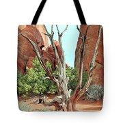 Ancient Lands Tote Bag