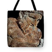ancient nudes photograph - Atlas Shrugged Tote Bag
