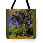 Ancient Oak At Rinconada De Los Gatos S Tote Bag