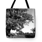 Ancient Oak, Bradgate Park Tote Bag