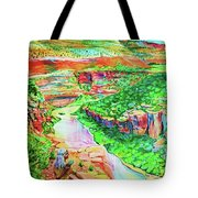 Ancient One Views River Tote Bag