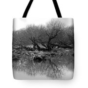 Ancient Pollard Trees Tote Bag