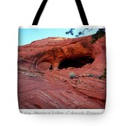 Ancient Ruins Mystery Valley Colorado Plateau Arizona 01 Text Tote Bag