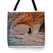 Ancient Ruins Mystery Valley Colorado Plateau Arizona 05 Text Tote Bag