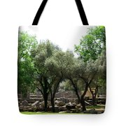 Ancient Ruins Temple Grounds 2 Tote Bag