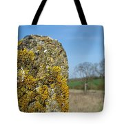 Ancient Stone Tote Bag