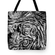 Ancient Stump Tote Bag