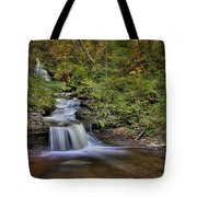 ...and Down It Goes... Tote Bag