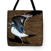 And Here We Go Tote Bag by Amanda Struz