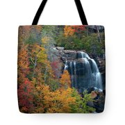 And The Leaves Will Fall Tote Bag