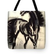 Andalusian Colt Tote Bag