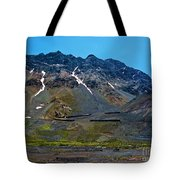 Andean Journey Tote Bag