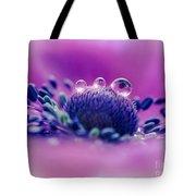Anemone 05-1 Tote Bag