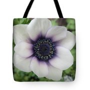 Anemone One Tote Bag