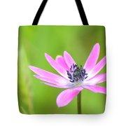 Anemone Stellata Tote Bag