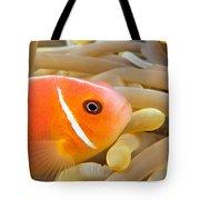 Anemonefish Tote Bag