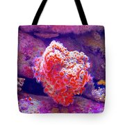 Anemones In Monterey Aquarium-california   Tote Bag