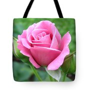 Angel Face Rose Tote Bag