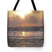 Angel In Approach For Landing 2 Tote Bag
