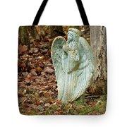 Angel In The Woods Tote Bag by Danielle Allard