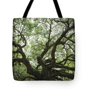 Angel Oak Branches Tote Bag
