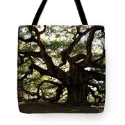 Angel Oak In November Tote Bag