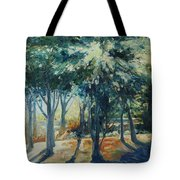 Angel Rays Tote Bag
