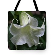 Angel Trumpet Tote Bag