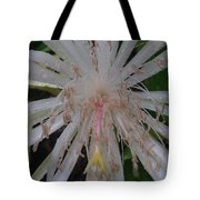 Angels Tears Tote Bag