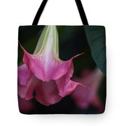 Angel's Trumpet Tote Bag