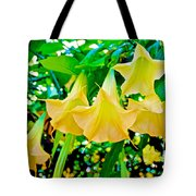 Angel's Trumpets At Pilgrim Place In Claremont-california Tote Bag