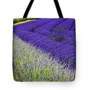 Angles In Lavender Tote Bag
