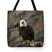 Angry Bald Eagle Tote Bag