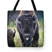 Angry Bison Tote Bag