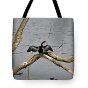 Anhinga And Alligator Tote Bag