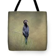 Anhinga By Darrell Hutto Tote Bag