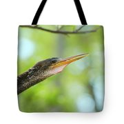Anhinga Close-up Tote Bag
