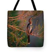 Anhinga Sunset Tote Bag