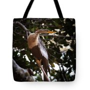 Anhinga Water Fowl Tote Bag