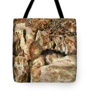 Animal - Squirrel - The Squirrel Tote Bag