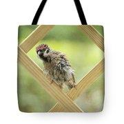 Animal Children Tote Bag