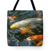 Animal - Fish - Bestow Good Fortune Tote Bag